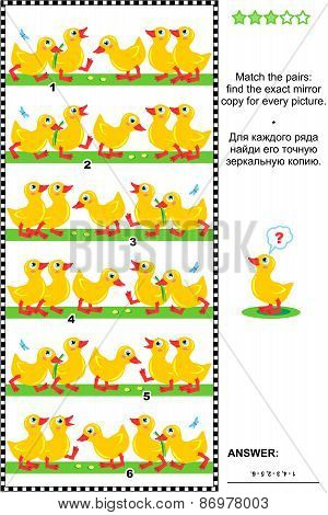 Visual puzzle with rows of cute little ducklings
