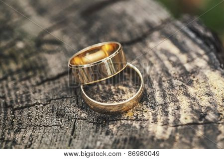 Two Rings On A Tree Stump