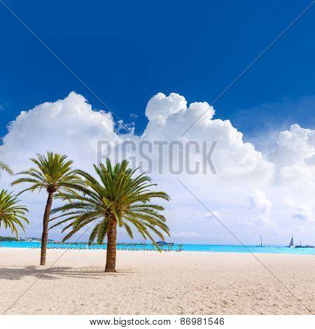 Majorca Platja Palmanova beach in Calvia Bol ses Teules Mallorca