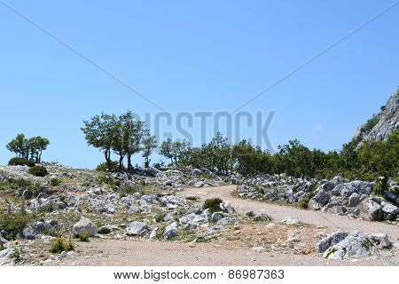 Empty, stone road