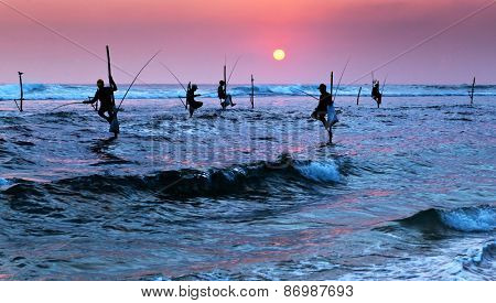 Silhouettes of the traditional stilt fishermen at sunset near Galle in Sri Lanka