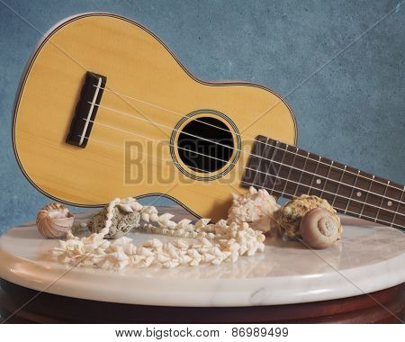 Rosewood Ukulele & Sea Shell Decor