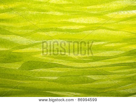 Horizontal Spring Grass Background Painted With Gouache