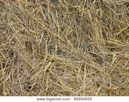 Hay. Background.