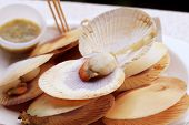 pic of scallops  - Closeup Grilled Scallops at market edible background - JPG