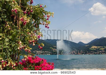Tegernsee Lake View, Flowerpot With Fuchsia And Verveine