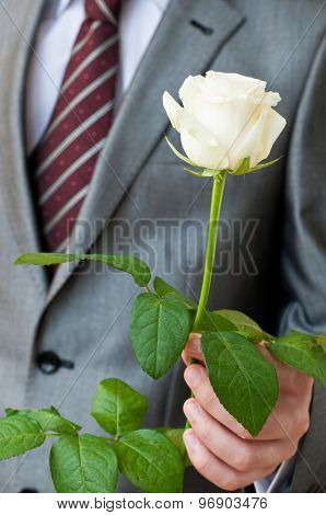 Man With A White Rose