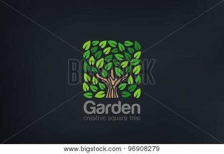 Abstract Green Tree Logo Square shape design vector template.  Green Farm Garden Logotype icon. Eco concept.