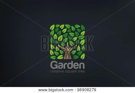 Abstract Green Tree Logo Square shape design vector template.  Green Farm Garden Logotype icon. Eco concept.