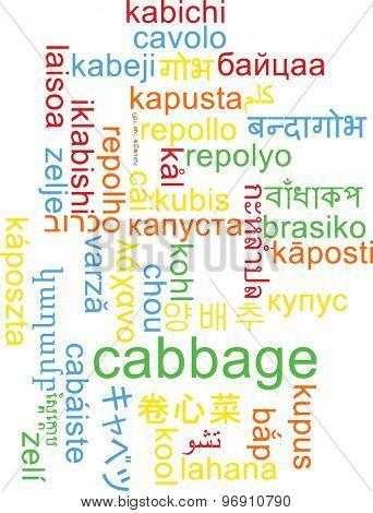 Background concept wordcloud multilanguage international many language illustration of cabbage