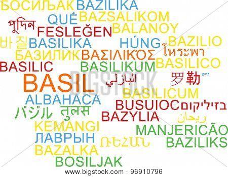 Background concept wordcloud multilanguage international many language illustration of basil