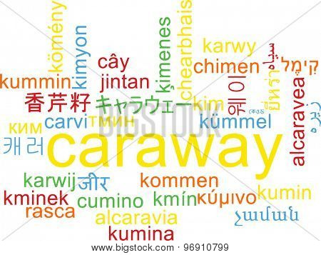 Background concept wordcloud multilanguage international many language illustration of caraway