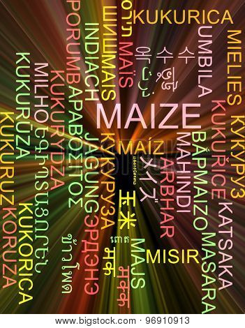 Background concept wordcloud multilanguage international many language illustration of maize glowing light