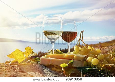Wine, grapes and cheese. Lavaux, Switzerland
