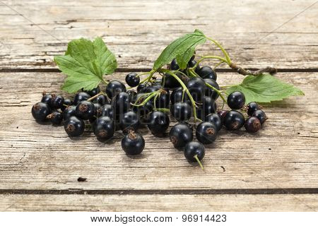 heap of organic black currant fruits with leaves on rustic wooden background