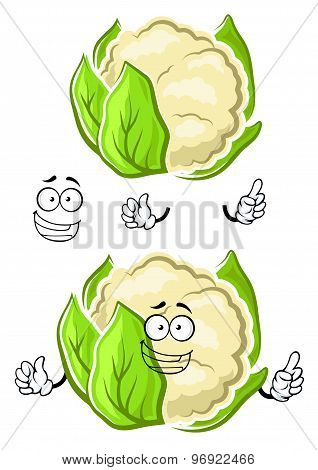 Healthy cauliflower vegetable cartoon character