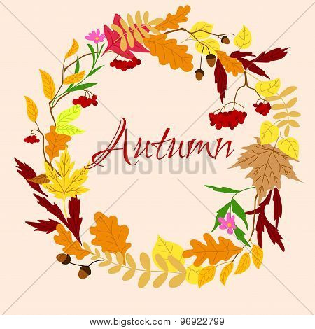 Autumnal frame with leaves and berries