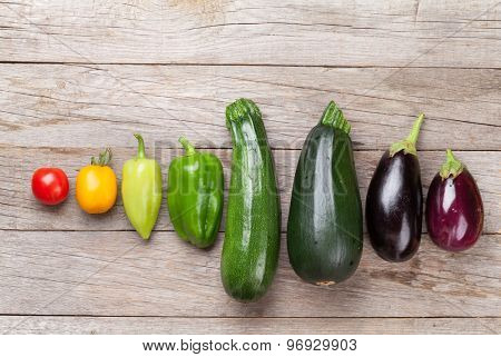 Fresh farmers garden colorful vegetables on wooden table. Top view