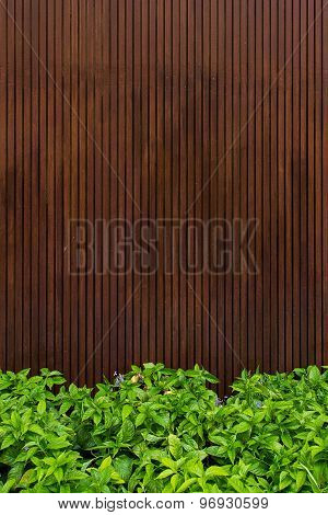 Wooden With Green Leaf