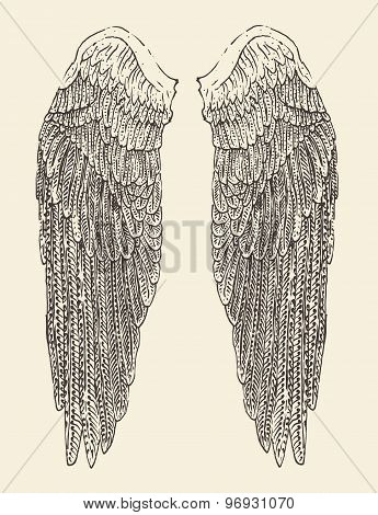 angel wings set illustration engraved style hand drawn sketch