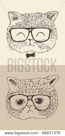 cute cat kitten in glasses hipster style engraved illustration hand drawn