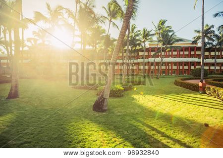 Tropical Garden With Pal Trees And Exotic Flowers In Beach Resort, Punta Cana