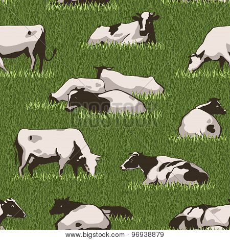 Cowcolorpattern