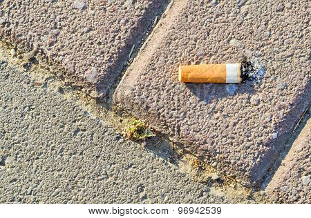 Cigarette Butt