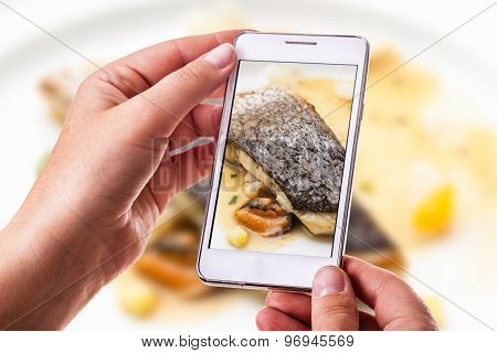 Fish Fillet Photography
