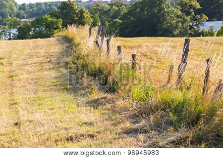 Old Destroyed Fence With Barbed Wire