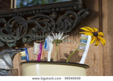 Toothbrushes On A Sink