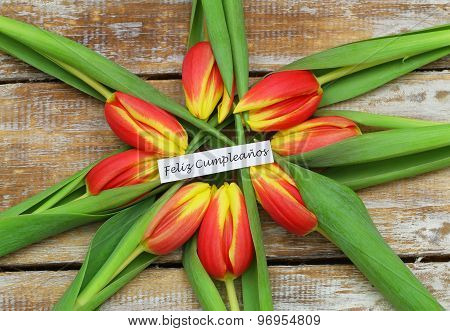 Feliz cumpleanos (Happy birthday in Spanish) with red and yellow tulips