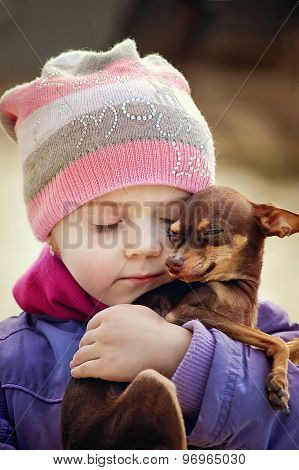 Beautiful Girl Holding Small Chihuahua Dog, Friendship Concept