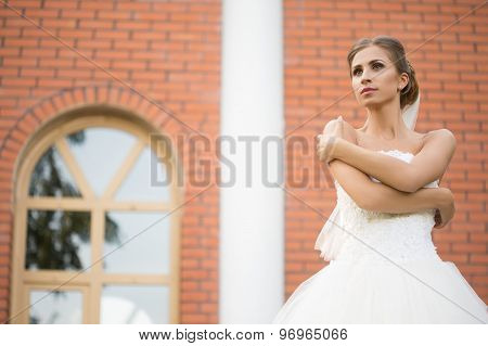Bride on a brick wall background. wedding Dress