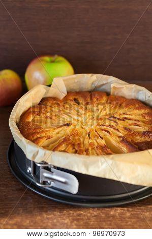 Tasty Homemade Apple Pie