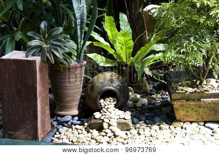 Detail of tropical garden in Boracay Philippines