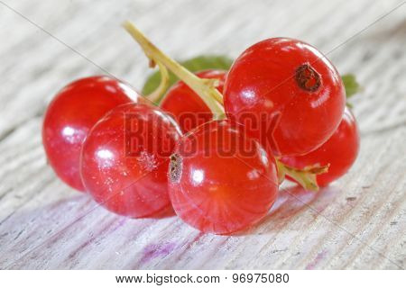 Close-up Of A Group Of Red Currant