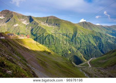 Transfagarasan Mountain Road With Wild Flowers From Romania