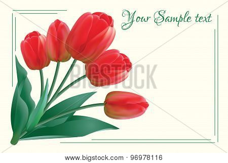 Greeting card with a bouquet of red tulips