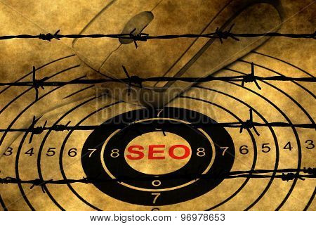 Seo Target Concept Against Barbwire