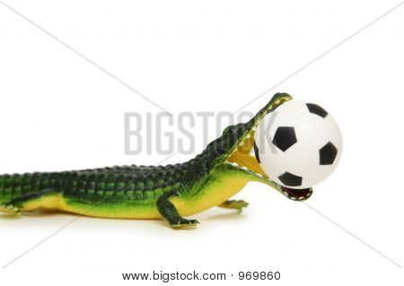 Crocodile With Football Isolated On White Background