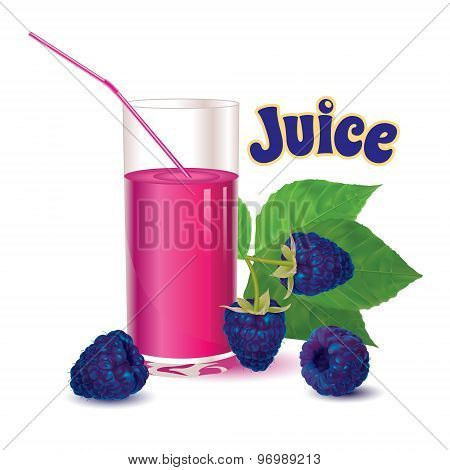glass with juice and straw, branch with leaves and ripe fresh berry blackberries