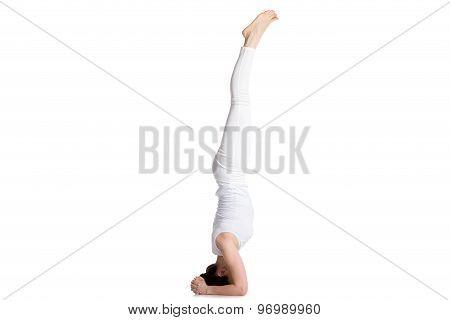 Salamba Sirsasana I Yoga Pose