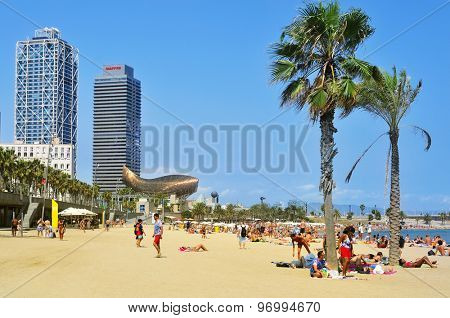 BARCELONA, SPAIN - AUGUST 19: Sunbathers at La Barceloneta Beach on August 19, 2014 in Barcelona, Spain. This popular beach hosts about 500.000 visitors from everywhere during the summer season
