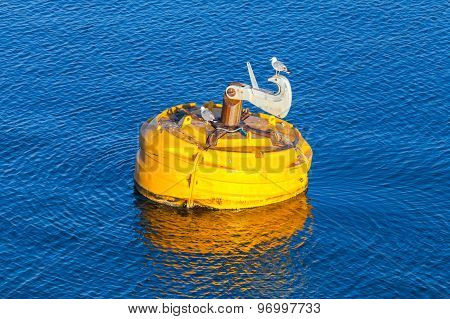 Yellow Buoy With Seagulls Floats On Water