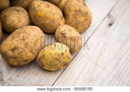 Unpeeled dirty white raw organic potatoes