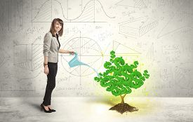 picture of water-saving  - Business woman watering a growing green dollar sign tree concept - JPG