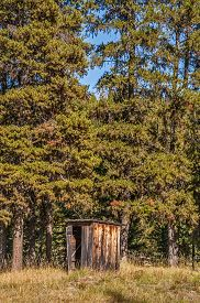picture of outhouse  - This outhouse at the edge of the forest looks to be in fairly good shape - JPG