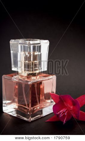 Perfume With Flower Isolated On Black