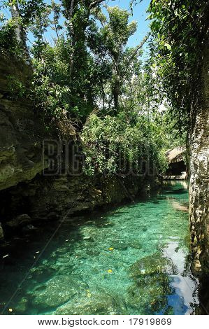 Turquoise spring water on a tropical landscape